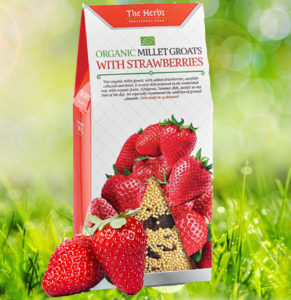 Hirss-maasikaga.jpg-Lotta